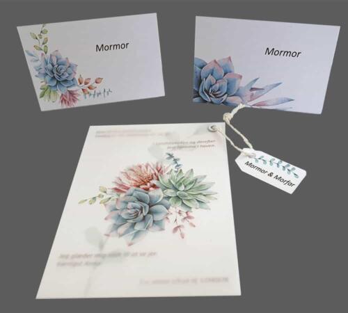 invitation og bordkort med sukkulenter på vellum